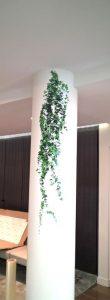 signalétique décor vinyle sur pilier sign-capitale