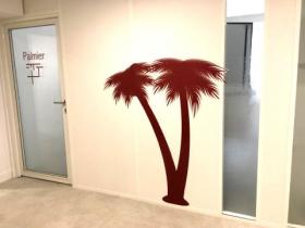 décor mural et vitrage